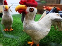 chickenbehindthewire - Copy