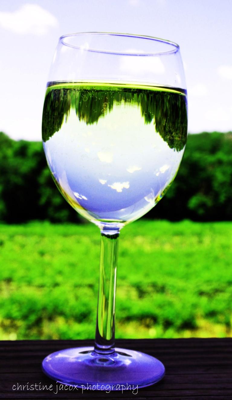 Falconer Vineyard Glass copy_editedWM-1