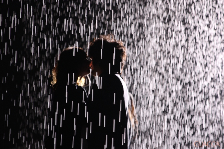 IMG_1269rainroom