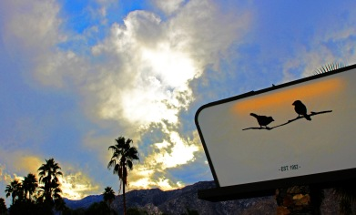 sign sparrows lodge