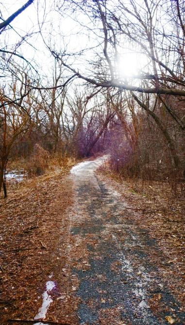 path-forward
