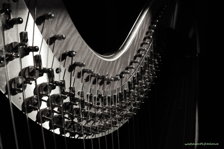 harp in shadow bw wm