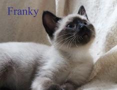 class photo franky_edited-1